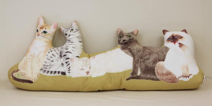 にゃんともぜいたくな 猫まみれハーレムクッションの会(アジア・中東猫)