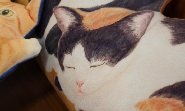にゃんともぜいたくな 猫まみれハーレムクッションの会 眠る三毛猫