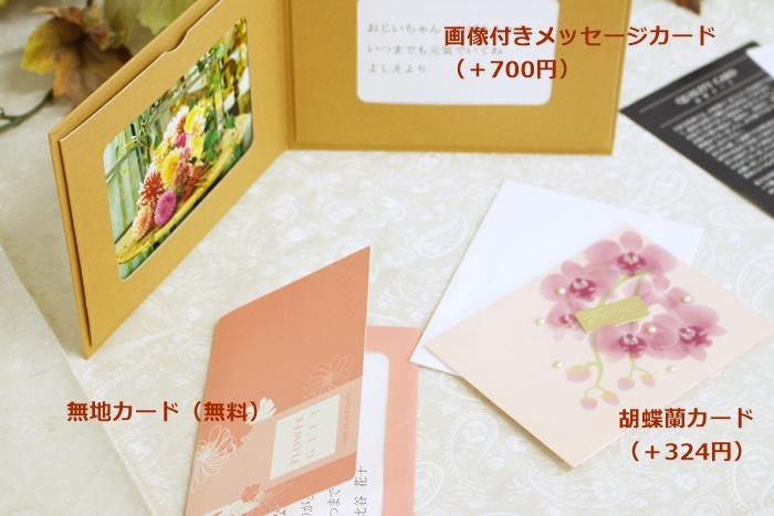 日比谷花壇 敬老の日ギフト オプションメッセージカード