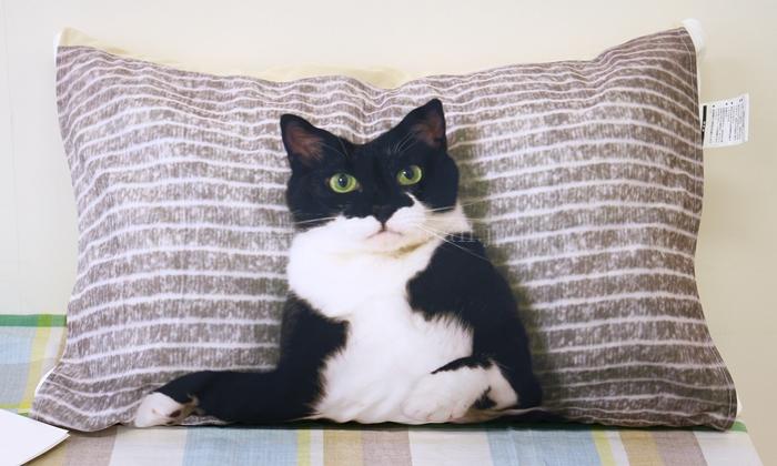 フェリシモ 添い寝待ち猫 ギズモさんまくらカバー