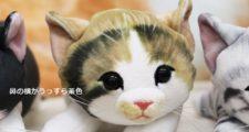 フェリシモ猫部 子猫ポーチのリアルさ