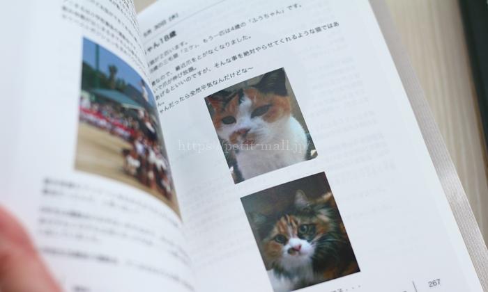 ブログ出版で書籍化 文章途中の写真サイズ