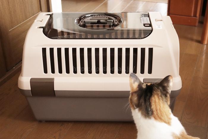 8キロまでOKのネコ用キャリーケース