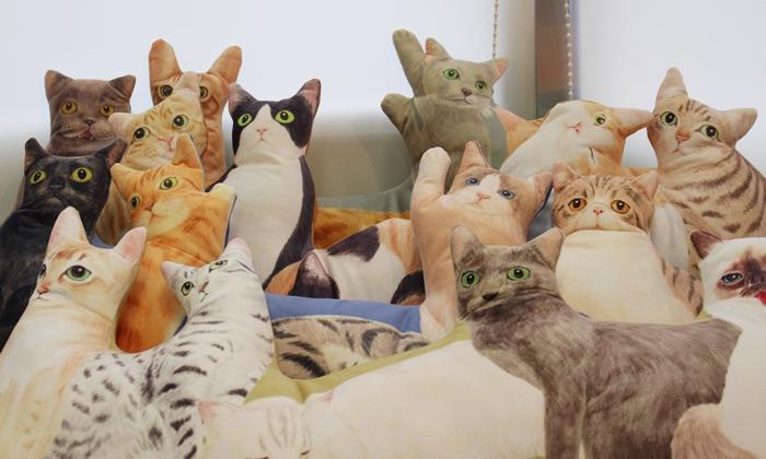 にゃんともぜいたくな 猫まみれハーレムクッションの会