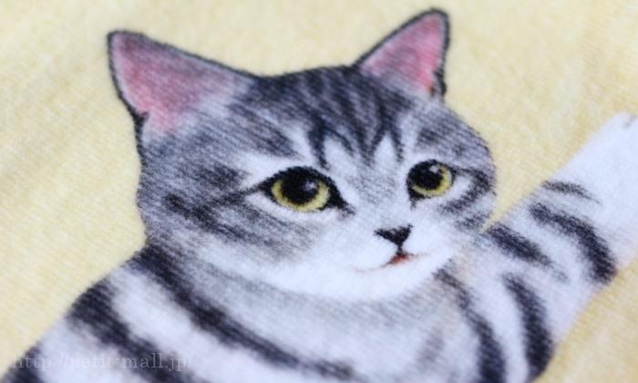ぶらーん!とぶらさがる いたずら猫のフェイスタオル