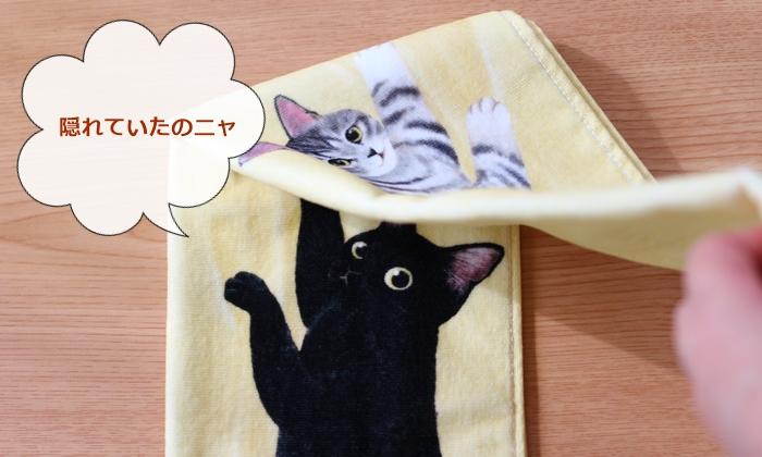 ぶらーん!とぶらさがる いたずら猫のフェイスタオル めくるともう1匹のネコ