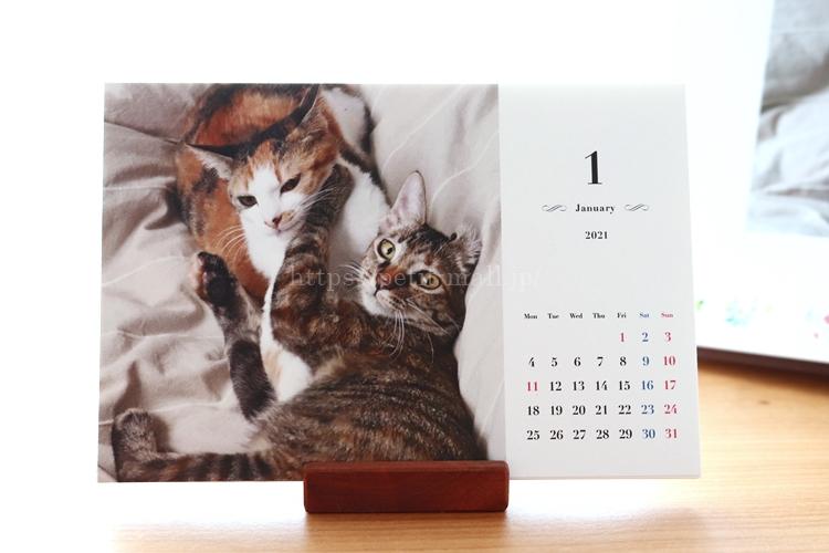 TOLOT(トロット)卓上カレンダー 月曜始まりシンプルデザイン
