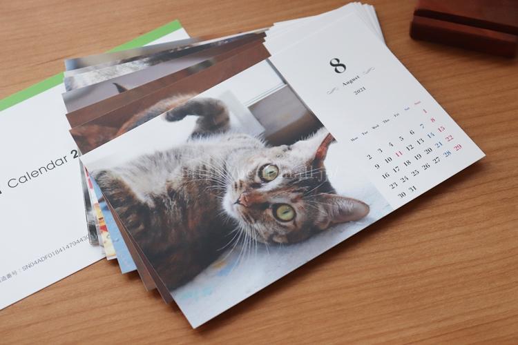 TOLOT卓上カレンダー シンプルデザイン月曜始まり