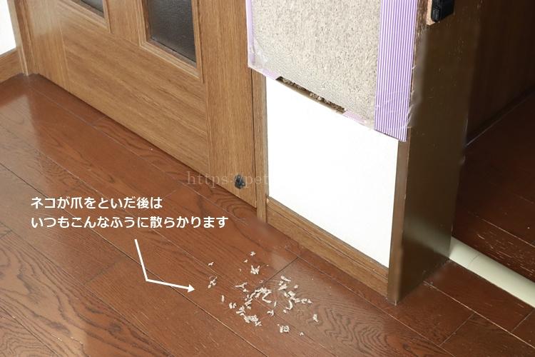 猫の爪とぎ後の散乱したゴミ